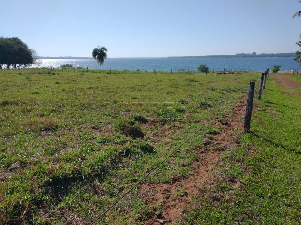 Comprar Rural / Rancho em Santo Antônio do Aracanguá apenas R$ 1.470.000,00 - Foto 21