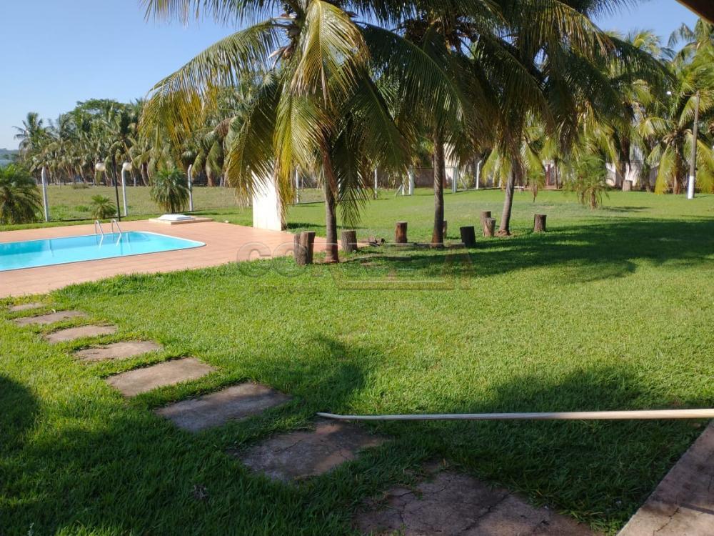 Comprar Rural / Rancho em Santo Antônio do Aracanguá apenas R$ 1.470.000,00 - Foto 22