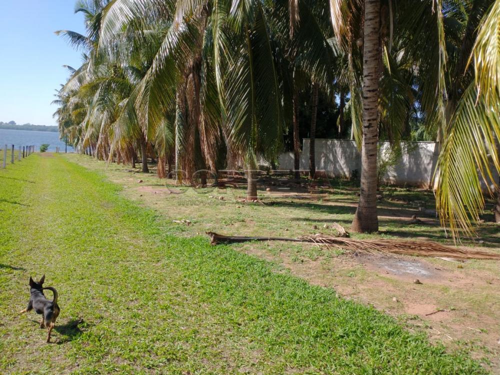 Comprar Rural / Rancho em Santo Antônio do Aracanguá apenas R$ 1.470.000,00 - Foto 30