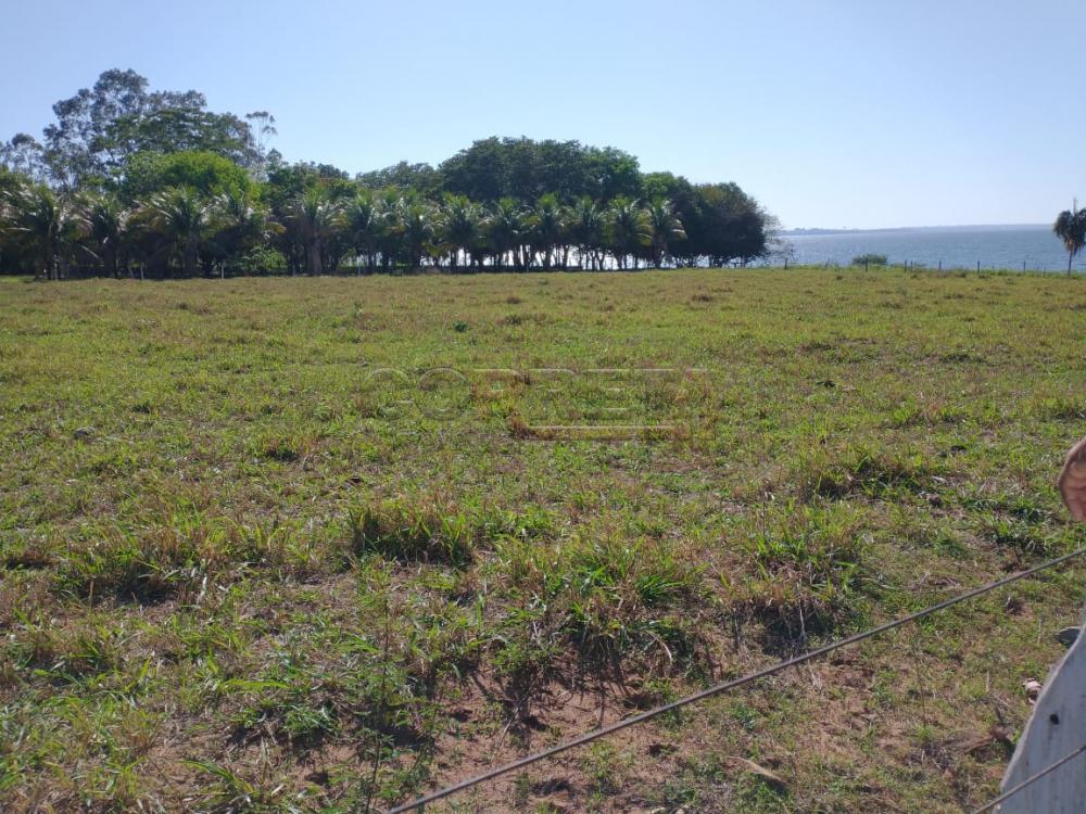 Comprar Rural / Rancho em Santo Antônio do Aracanguá apenas R$ 1.470.000,00 - Foto 31