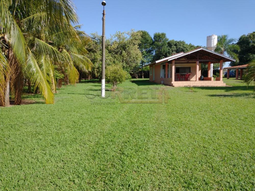 Comprar Rural / Rancho em Santo Antônio do Aracanguá apenas R$ 1.470.000,00 - Foto 32