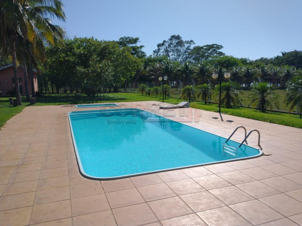 Comprar Rural / Rancho em Santo Antônio do Aracanguá apenas R$ 1.470.000,00 - Foto 34