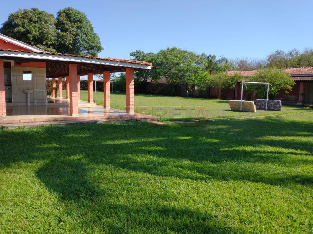 Comprar Rural / Rancho em Santo Antônio do Aracanguá apenas R$ 1.470.000,00 - Foto 35