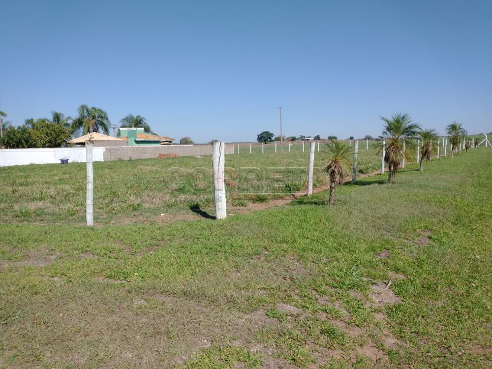 Comprar Rural / Rancho em Santo Antônio do Aracanguá apenas R$ 1.470.000,00 - Foto 38