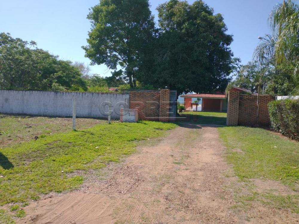 Comprar Rural / Rancho em Santo Antônio do Aracanguá apenas R$ 1.470.000,00 - Foto 39
