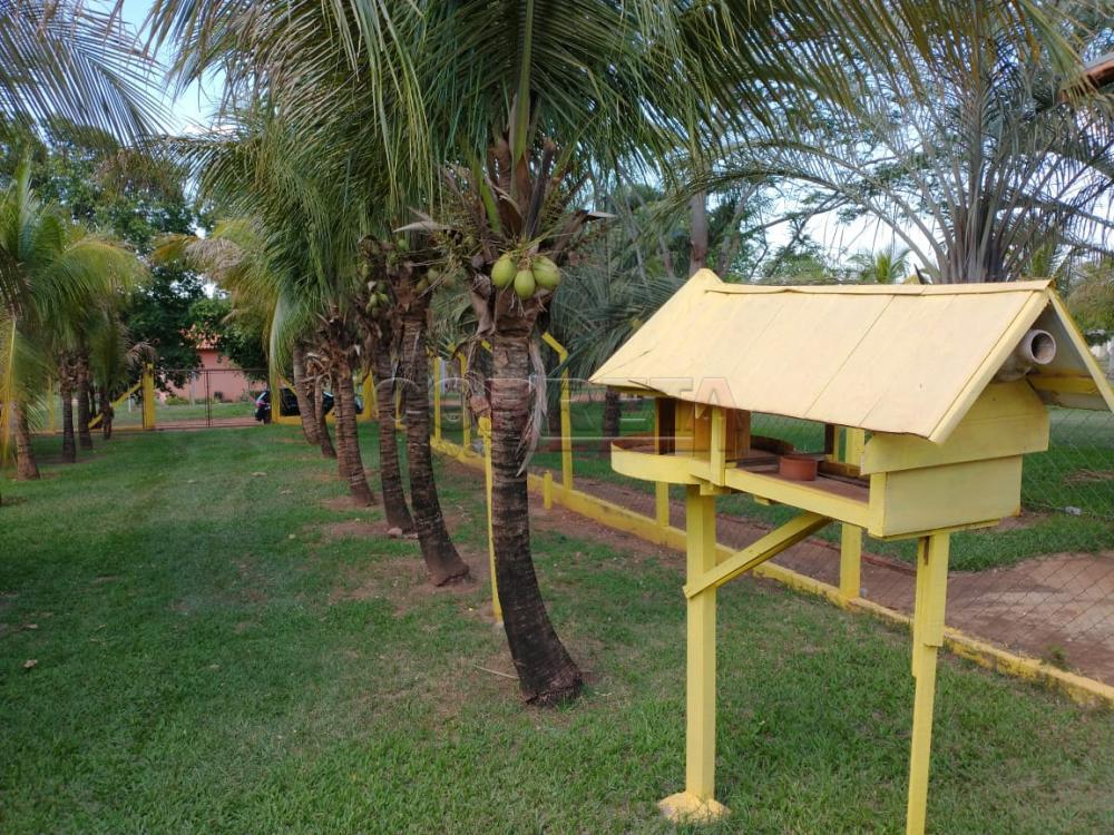 Comprar Rural / Rancho Condomínio em Araçatuba apenas R$ 250.000,00 - Foto 2