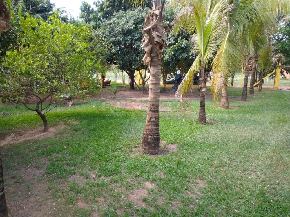Comprar Rural / Rancho Condomínio em Araçatuba apenas R$ 250.000,00 - Foto 3