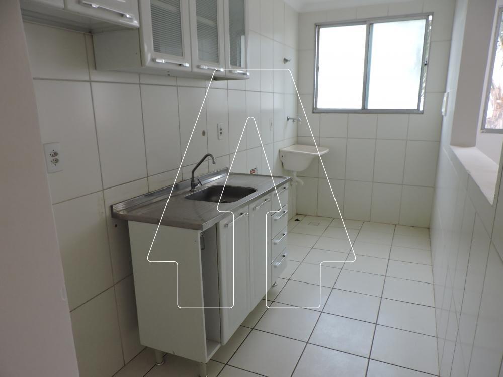 Alugar Apartamento / Padrão em Araçatuba R$ 800,00 - Foto 1