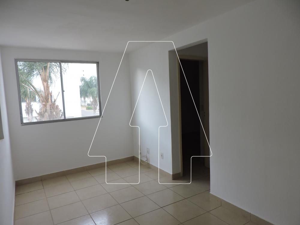 Alugar Apartamento / Padrão em Araçatuba R$ 800,00 - Foto 2