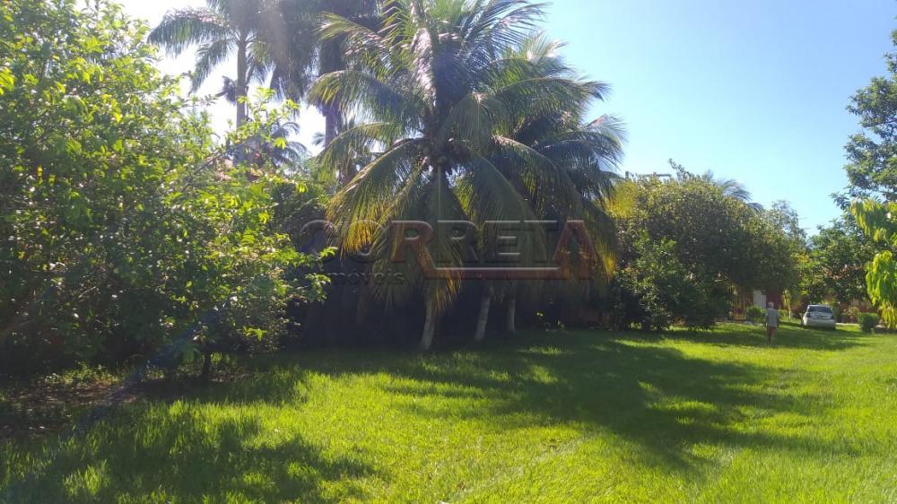 Comprar Rural / Rancho em Santo Antônio do Aracanguá apenas R$ 350.000,00 - Foto 10