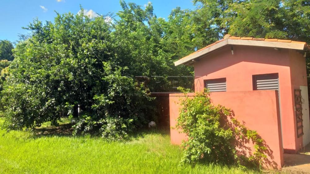 Comprar Rural / Rancho em Santo Antônio do Aracanguá apenas R$ 350.000,00 - Foto 8