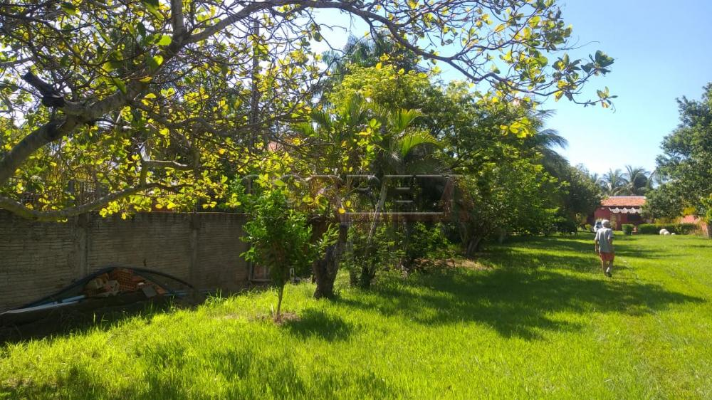 Comprar Rural / Rancho em Santo Antônio do Aracanguá apenas R$ 350.000,00 - Foto 9