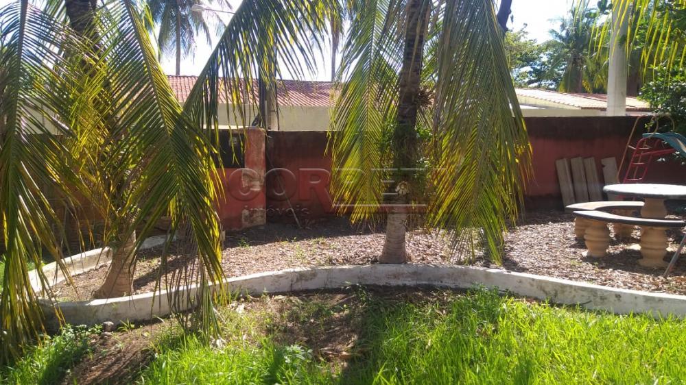 Comprar Rural / Rancho em Santo Antônio do Aracanguá apenas R$ 350.000,00 - Foto 12