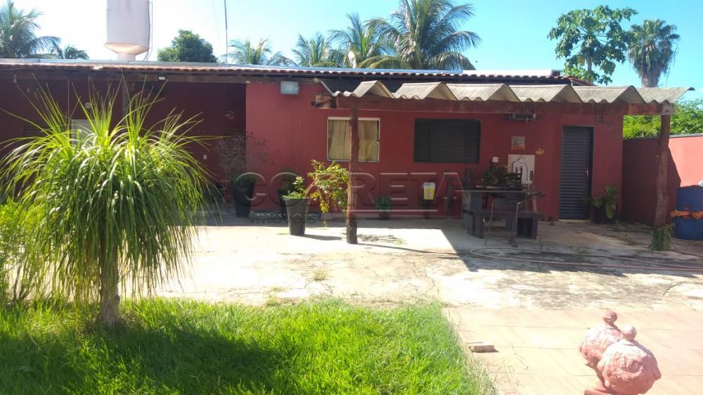 Comprar Rural / Rancho em Santo Antônio do Aracanguá apenas R$ 350.000,00 - Foto 18
