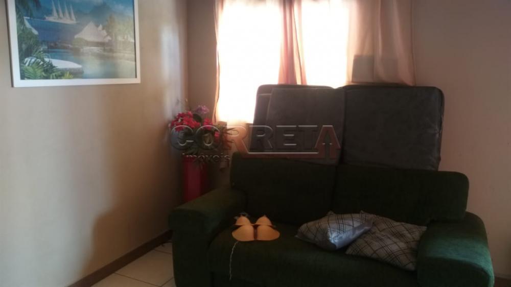 Comprar Rural / Rancho em Santo Antônio do Aracanguá apenas R$ 350.000,00 - Foto 31