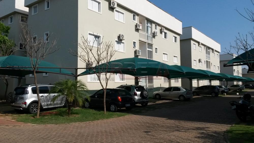 Comprar Apartamento / Padrão em Araçatuba apenas R$ 240.000,00 - Foto 12