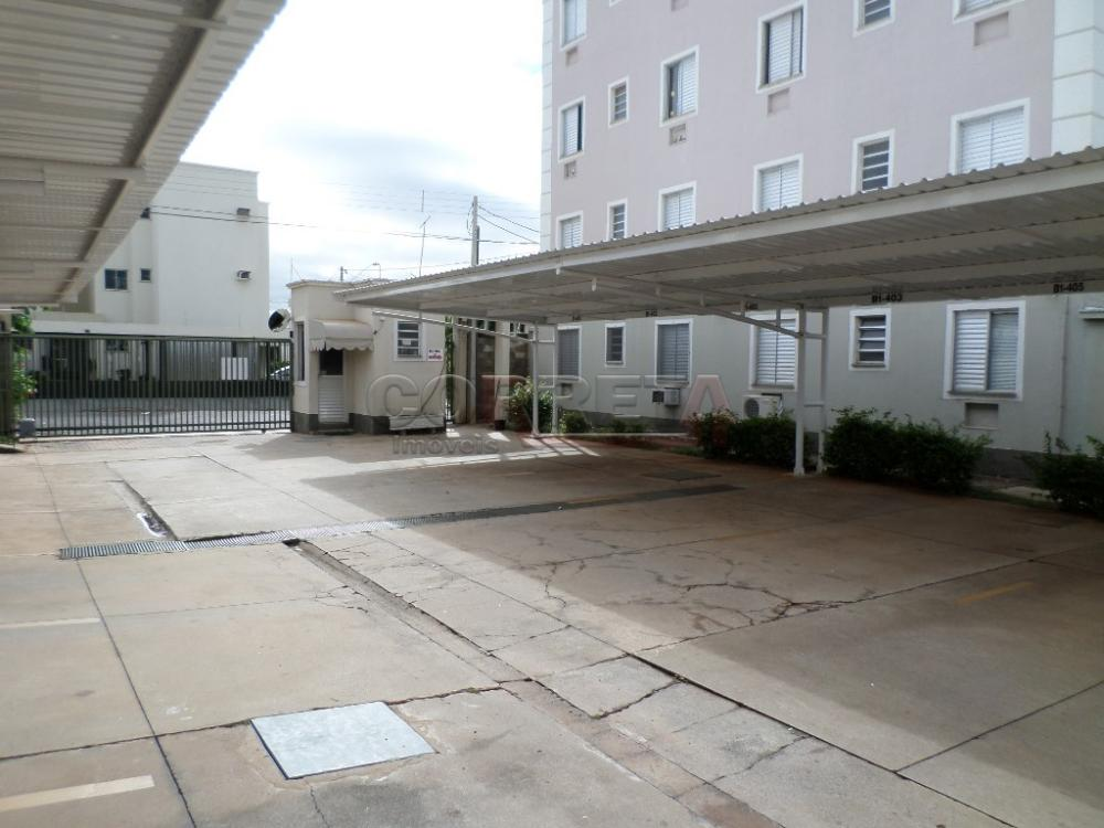 Alugar Apartamento / Padrão em Araçatuba apenas R$ 650,00 - Foto 10