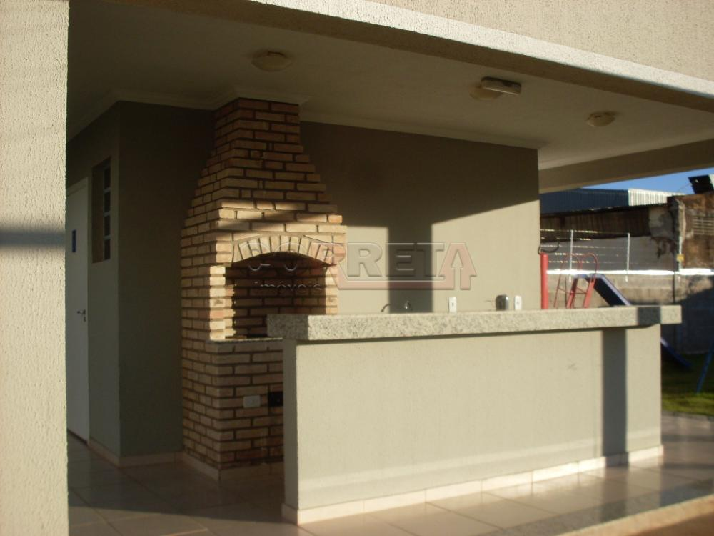 Alugar Apartamento / Padrão em Araçatuba apenas R$ 650,00 - Foto 13
