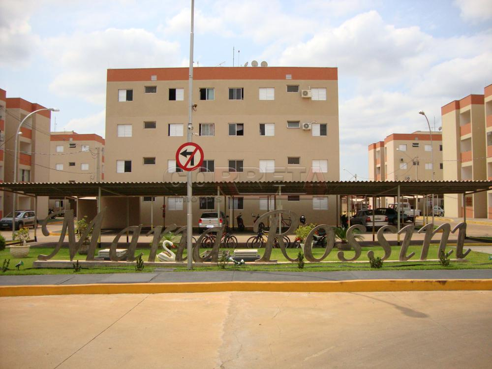 Alugar Apartamento / Padrão em Araçatuba R$ 600,00 - Foto 2