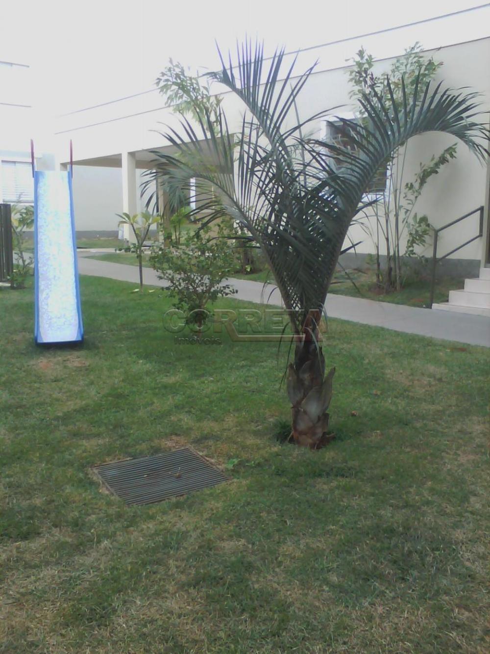 Alugar Apartamento / Padrão em Araçatuba apenas R$ 760,00 - Foto 17