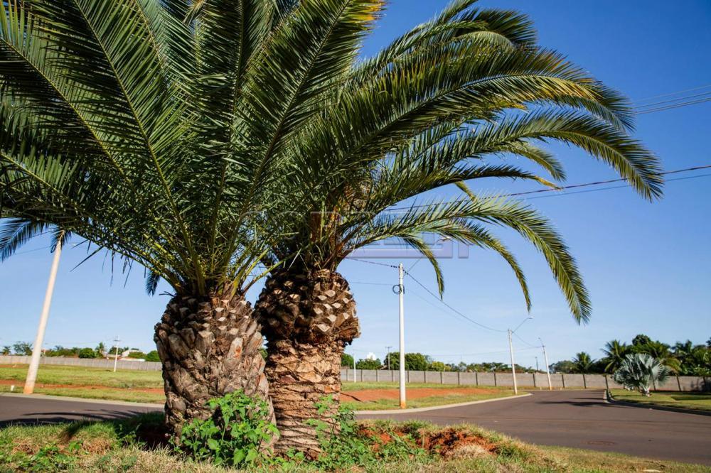 Comprar Terreno / Condomínio em Araçatuba - Foto 10