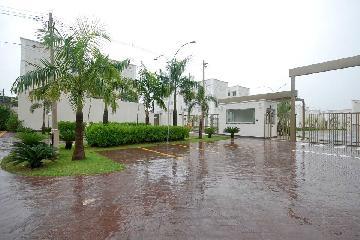 Alugar Apartamento / Padrão em Araçatuba R$ 550,00 - Foto 8