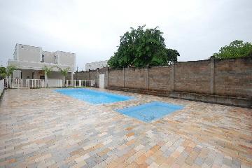 Alugar Apartamento / Padrão em Araçatuba R$ 550,00 - Foto 11