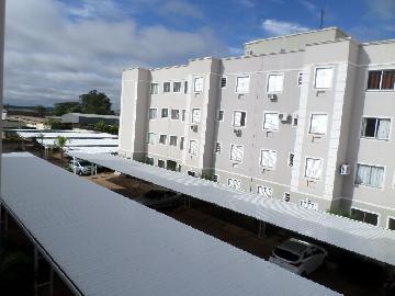 Alugar Apartamento / Padrão em Araçatuba apenas R$ 550,00 - Foto 8