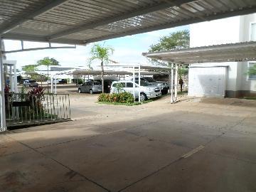 Alugar Apartamento / Padrão em Araçatuba apenas R$ 550,00 - Foto 9