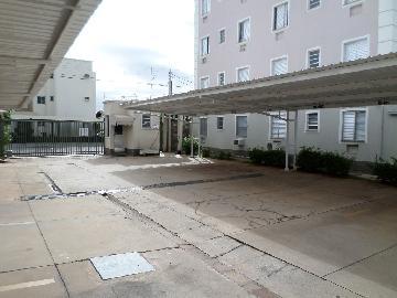 Alugar Apartamento / Padrão em Araçatuba apenas R$ 550,00 - Foto 10
