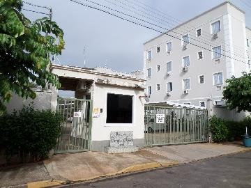 Alugar Apartamento / Padrão em Araçatuba apenas R$ 550,00 - Foto 11