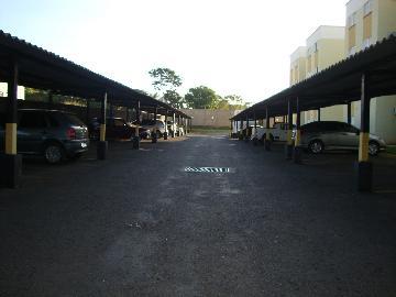 Comprar Apartamento / Padrão em Araçatuba apenas R$ 130.000,00 - Foto 12