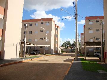 Alugar Apartamento / Padrão em Araçatuba R$ 600,00 - Foto 3