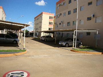 Alugar Apartamento / Padrão em Araçatuba R$ 600,00 - Foto 4