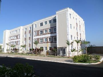 Alugar Apartamento / Padrão em Araçatuba R$ 650,00 - Foto 9
