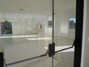 Alugar Apartamento / Padrão em Araçatuba R$ 650,00 - Foto 14