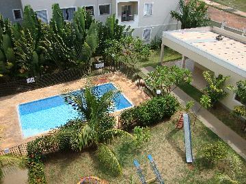 Alugar Apartamento / Padrão em Araçatuba apenas R$ 760,00 - Foto 14