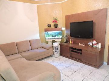 Alugar Casa / Padrão em Araçatuba. apenas R$ 1.600,00