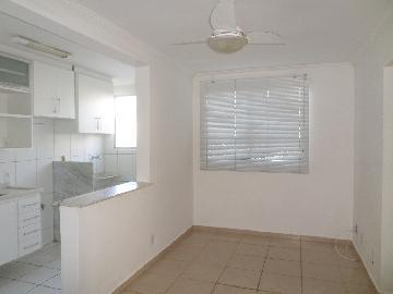 Alugar Apartamento / Padrão em Araçatuba apenas R$ 550,00 - Foto 1