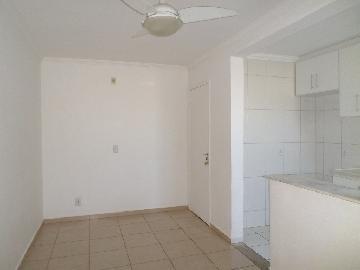 Alugar Apartamento / Padrão em Araçatuba apenas R$ 550,00 - Foto 2