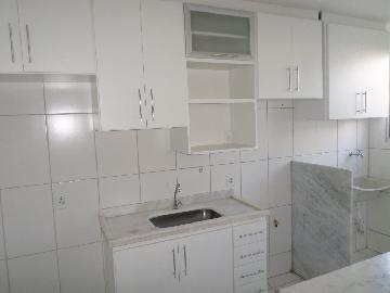 Alugar Apartamento / Padrão em Araçatuba apenas R$ 550,00 - Foto 3