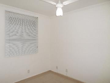 Alugar Apartamento / Padrão em Araçatuba apenas R$ 550,00 - Foto 4