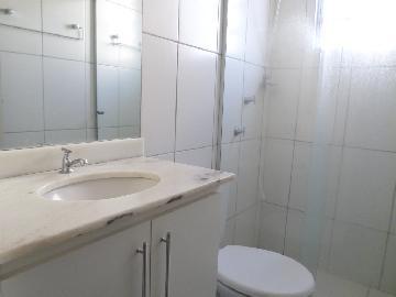 Alugar Apartamento / Padrão em Araçatuba apenas R$ 550,00 - Foto 5