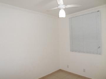 Alugar Apartamento / Padrão em Araçatuba apenas R$ 550,00 - Foto 6