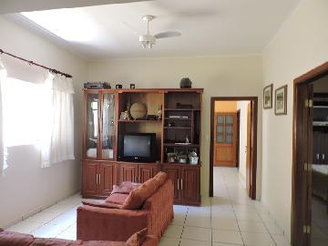 Aracatuba Vila Carvalho casa Venda R$650.000,00 3 Dormitorios 5 Vagas Area do terreno 320.00m2