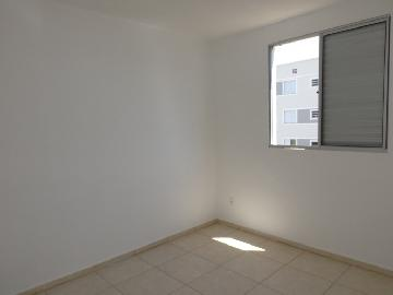 Alugar Apartamento / Padrão em Araçatuba R$ 700,00 - Foto 12