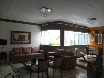 Aracatuba Dona Amelia Casa Venda R$800.000,00 3 Dormitorios 2 Vagas Area do terreno 480.00m2