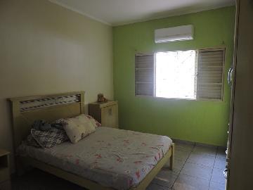 Comprar Casa / Residencial em Araçatuba apenas R$ 235.000,00 - Foto 4