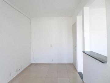 Alugar Apartamento / Duplex em Araçatuba apenas R$ 800,00 - Foto 3
