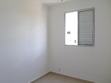 Alugar Apartamento / Duplex em Araçatuba apenas R$ 800,00 - Foto 6